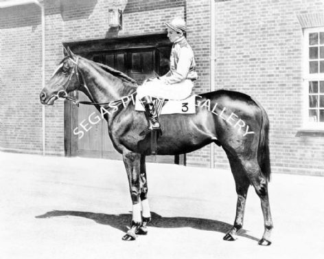 Racehorse Crepello with Jockey Lester Piggott